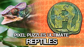 Pixel Puzzles Ultimate - Reptile Puzzle Pack