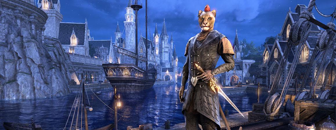 The Elder Scrolls Online: Summerset (Collector's Upgrade)