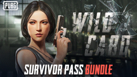 PUBG: Survivor Pass 3 Bundle